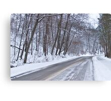 Winter Drive Canvas Print