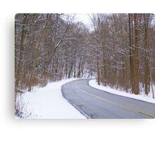 Snowy Drive Canvas Print