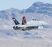 EA-18G Growler, 166894 Cruising Out by Henry Plumley