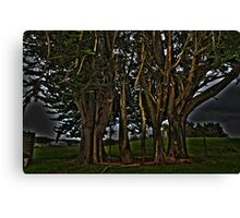 Green Trees Canvas Print