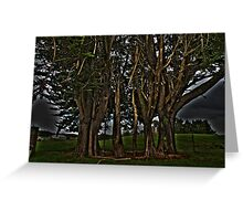 Green Trees Greeting Card