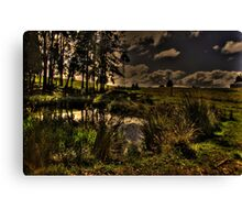 Dam Side Canvas Print