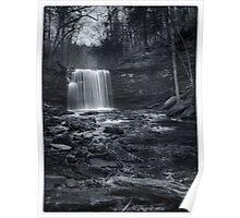 Harrison Wright Falls November 2011 Poster