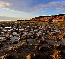 Portsea back beach by Mark B Williams