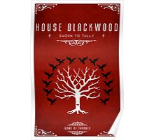 House Blackwood Poster