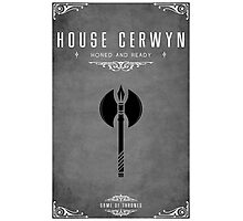 House Cerwyn Photographic Print