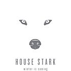 House Stark Minimalist Poster by liquidsouldes