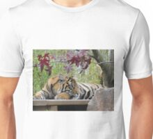 Beautiful Tiger Photo - animal lovers Unisex T-Shirt