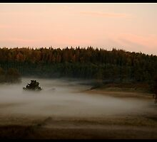 Fog patch at Dawn by Olivier Moreno