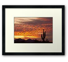 Arizona November Sunrise With Saguaro   Framed Print