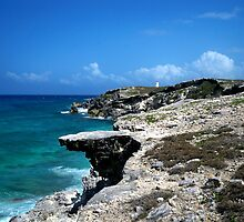 Isla Mujeres Overlook by Gina Collins