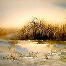 Beyond Silence....Winter Landscape.. by ©Janis Zroback