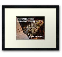 Zinger Challenge Framed Print