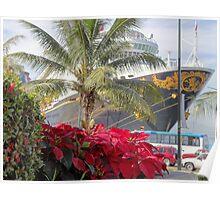 Poinsettia, palm tree and a cruise - Noche buena, palmera y crucero Poster