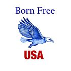 Free in The USA iPhone Case by Sandra Gale