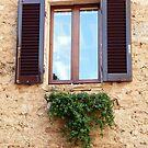 A Window In San Gimignano by Fara