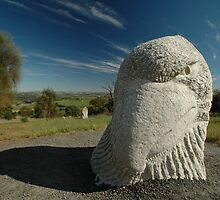 Eagle Head Sculpture, Sculpure Park, Barossa Valley by muz2142