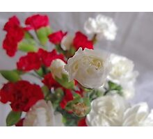 Carnation Bunch Photographic Print