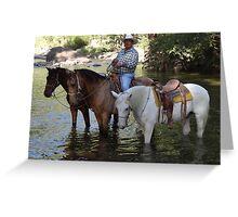 Rancher and guide - Ranchero y guia de turistas Greeting Card