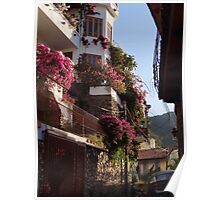 Small streets - houses on the hill - Calles angostas - casas en el cerro Poster
