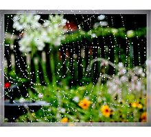 WWW.  wet wide web Photographic Print