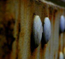 Truck~Buttons by GMcDermott