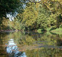 River Road 04 by Randen Weinholtz