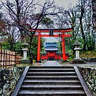 Kyoto Temple, Japan by Abtin Eshraghi