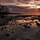 Goldeneye by Stuart Chapman