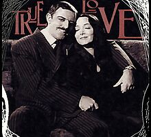 Gomez & Morticia Addams: True Love by torg