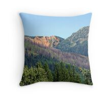 Great Northern 3 Throw Pillow