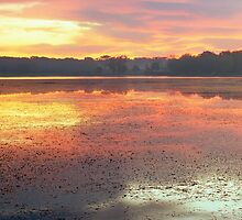 Stony Creek Lake by Bill Spengler