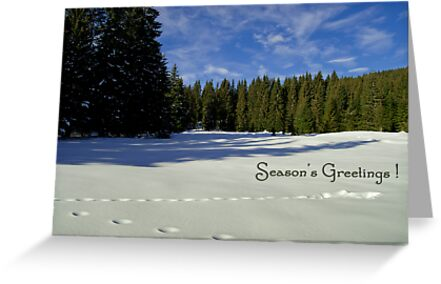 Season's Greetings ~ Austria ~ Europe by Sabine Jacobs