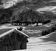 Wishing You a Merry Christmas ~ Austria ~ Europe by Sabine Jacobs