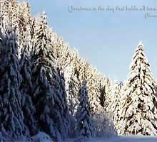 Winter Wonderland ~ Austria ~ Europe by Sabine Jacobs