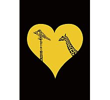 Giraffes Love Cranes Photographic Print