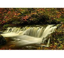 Campsie Glen Photographic Print