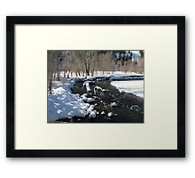 Little Big Wood River, Ketchum, Idaho; USA Framed Print