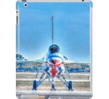 Perch iPad Case/Skin