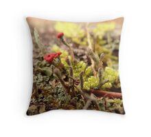 Little Lichen Throw Pillow
