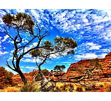 Kings Canyon Photographic Print