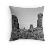 Looking Through the North Window Throw Pillow