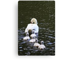 Following the Leader Canvas Print