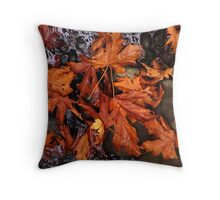 Autumn Leaves On a Pond Throw Pillow