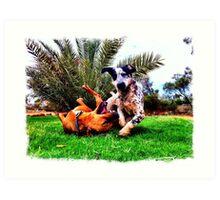 Outback Pups Art Print