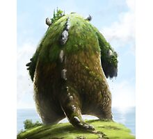 Balthazar the Colossus Photographic Print
