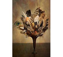 Flightless bird Photographic Print