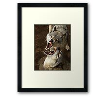 """""""Smiles, everyone, smiles!"""" - Timber Wolves Framed Print"""