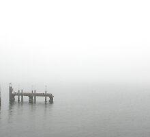 Sea Fog by Shaynelee