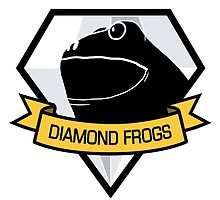 Diamond Frogs Logo by Polymetric